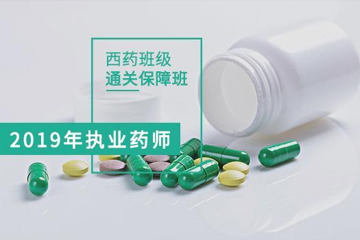 2019年西药通关保障班4680.00