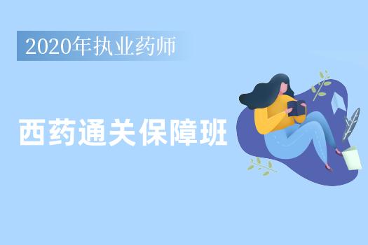 2020年执业药师西药通关保障班