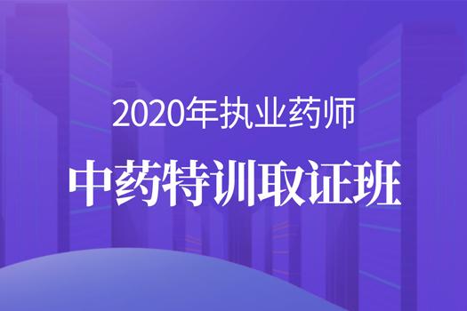 2020年执业药师中药特训取证班