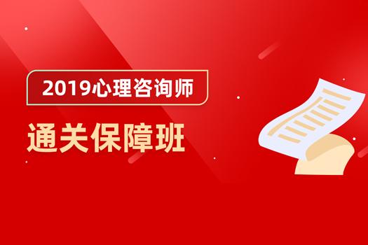 2019心理咨询师通关保障班4980