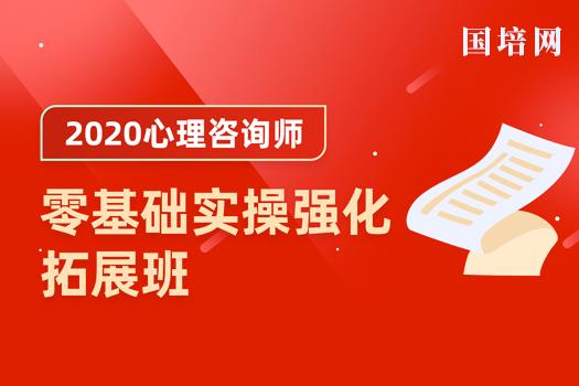 2020心理咨询师(国培网)-零基础实操强化拓展班